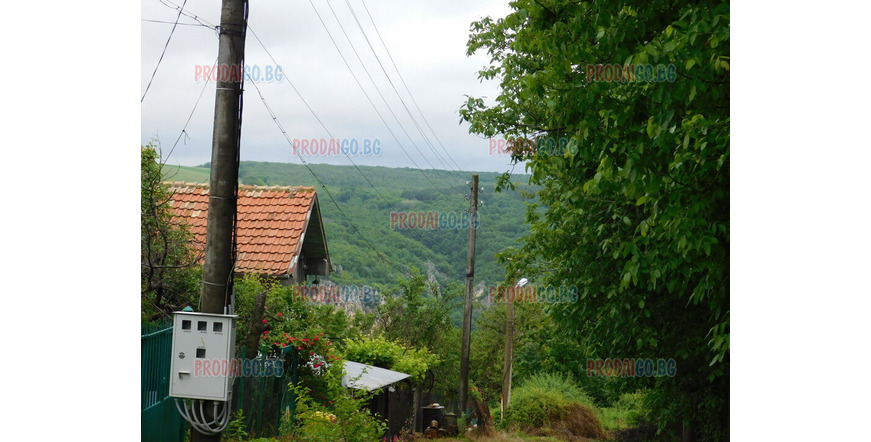 A house in the village of Koshov